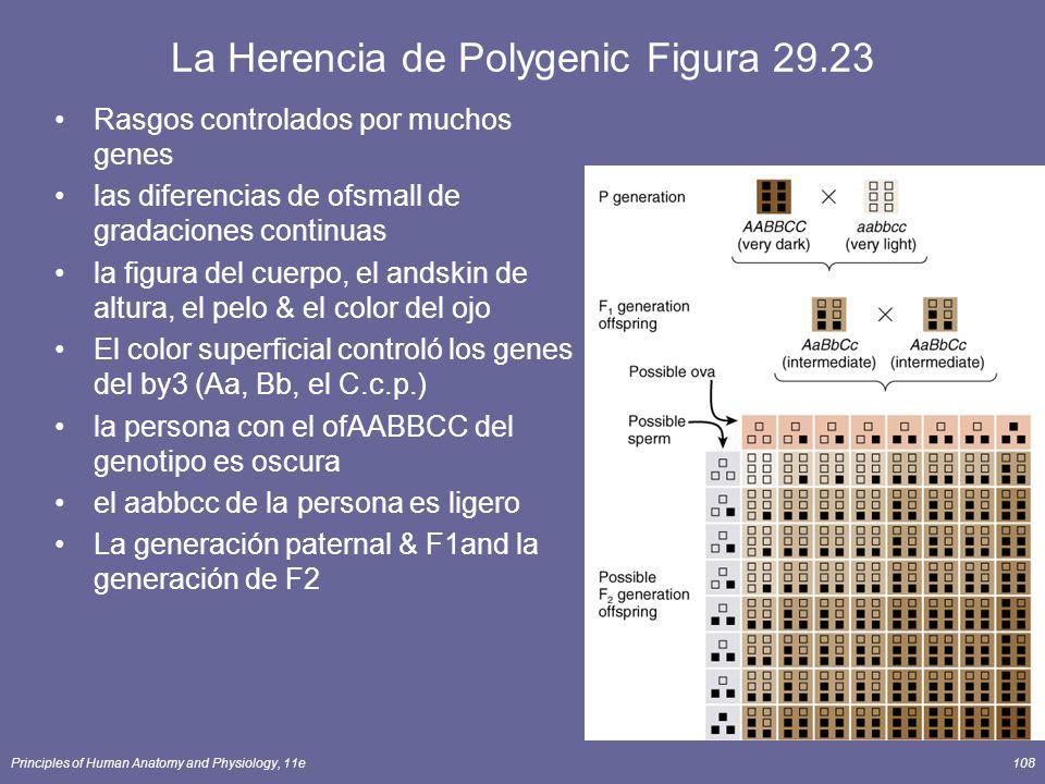 La Herencia de Polygenic Figura 29.23