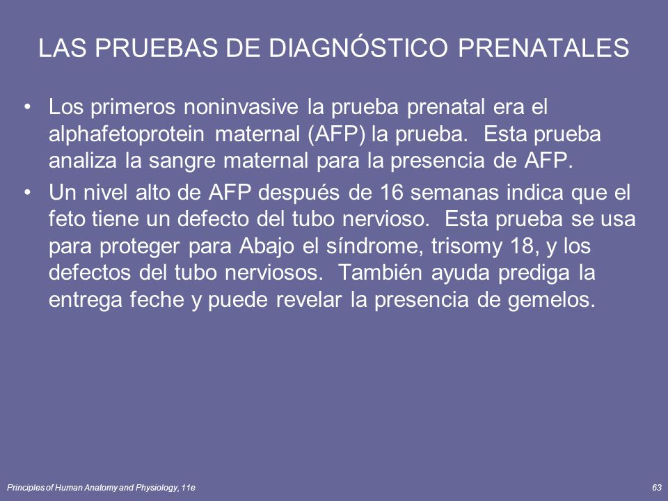 LAS PRUEBAS DE DIAGNÓSTICO PRENATALES