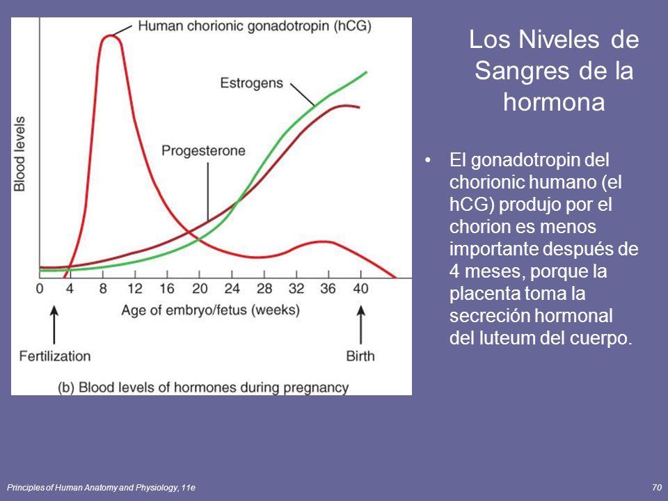 Los Niveles de Sangres de la hormona