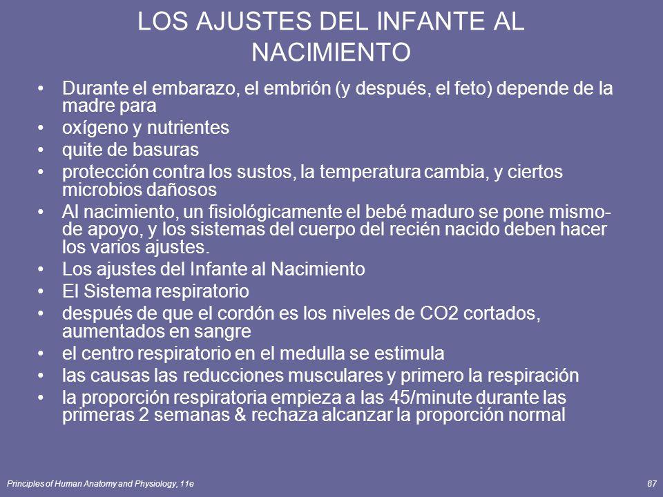 LOS AJUSTES DEL INFANTE AL NACIMIENTO