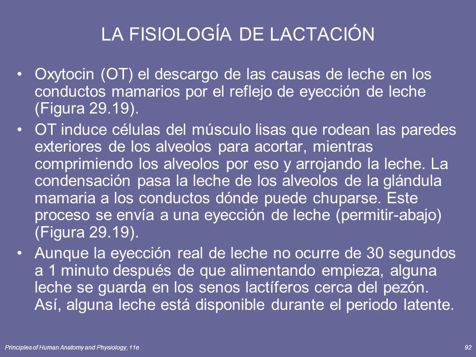 LA FISIOLOGÍA DE LACTACIÓN