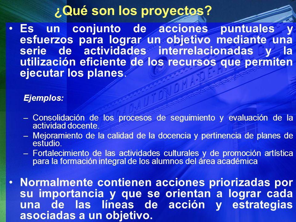 ¿Qué son los proyectos