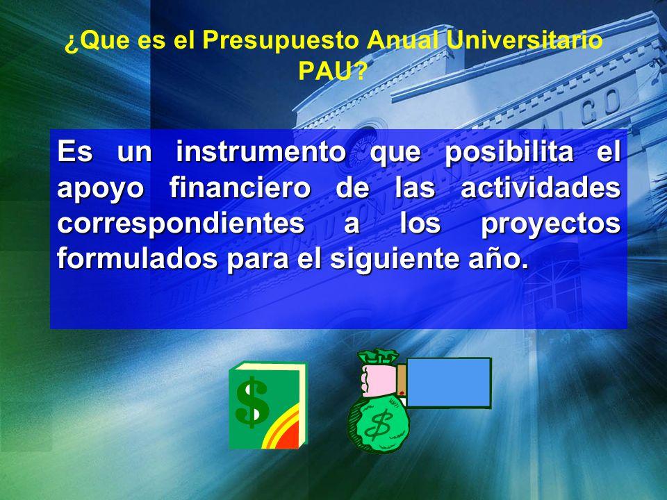 ¿Que es el Presupuesto Anual Universitario PAU