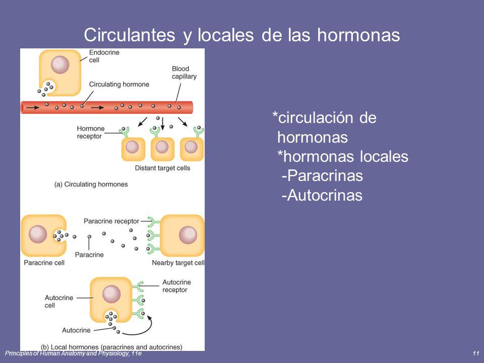 Circulantes y locales de las hormonas