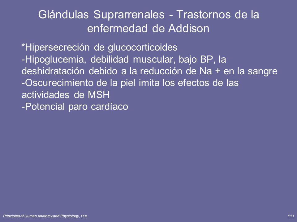 Glándulas Suprarrenales - Trastornos de la enfermedad de Addison