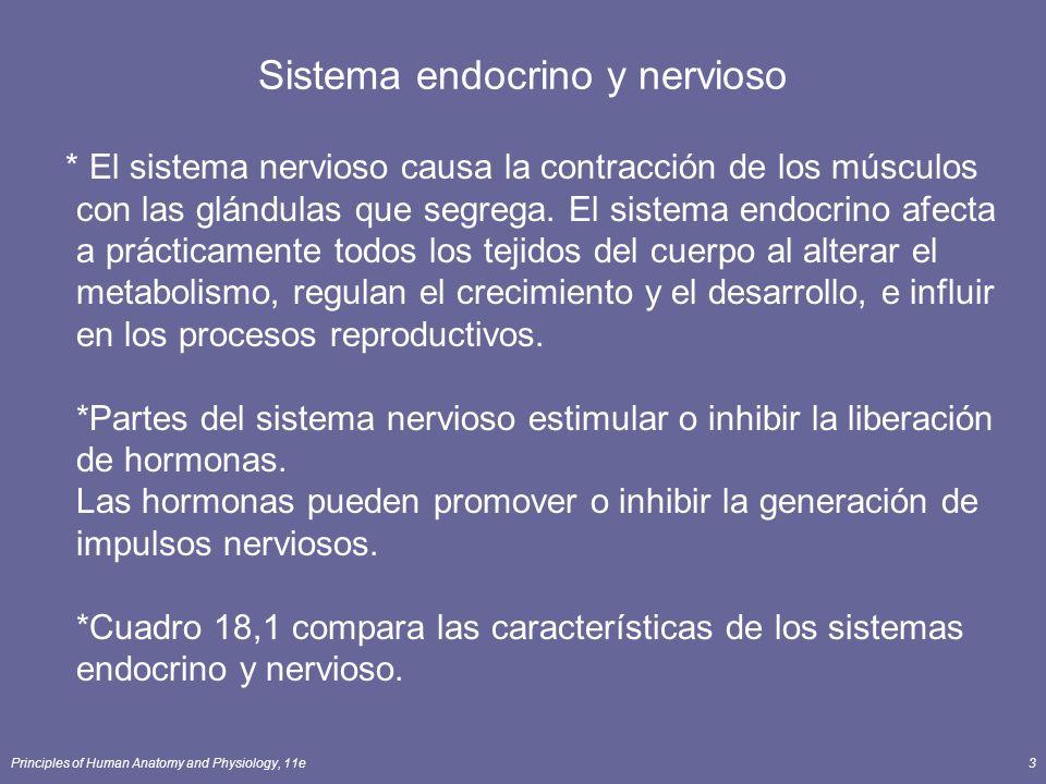 Sistema endocrino y nervioso