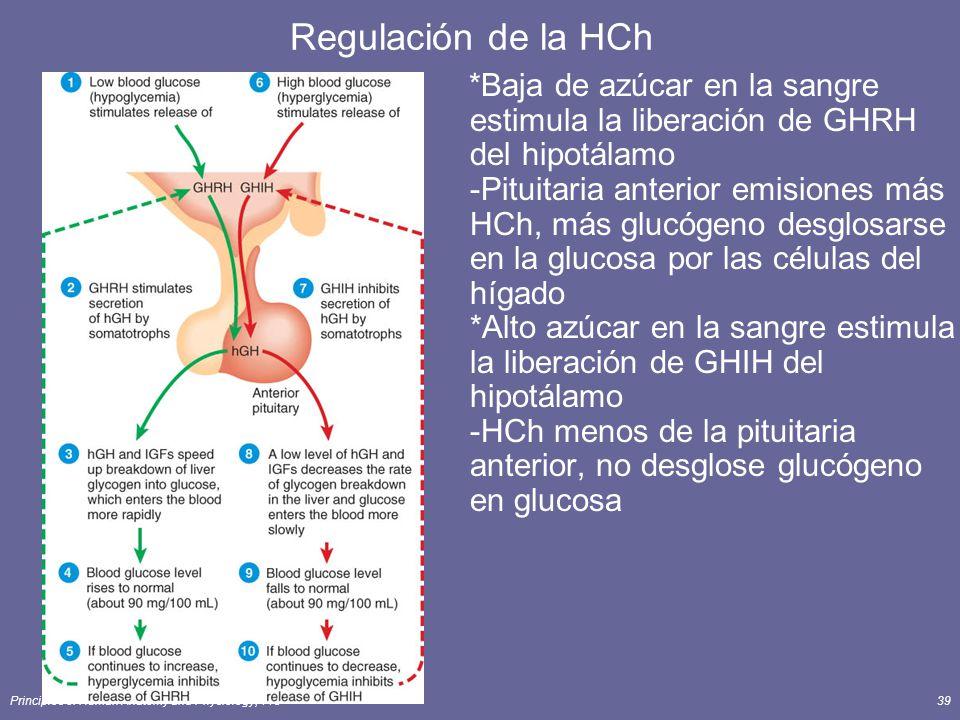 Regulación de la HCh