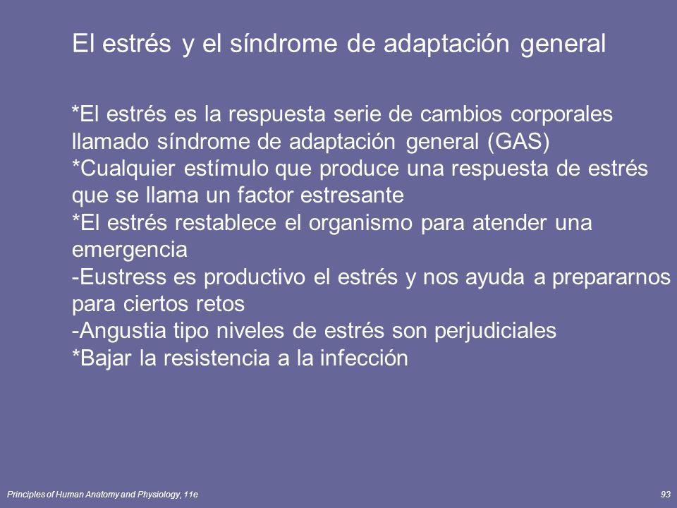 El estrés y el síndrome de adaptación general