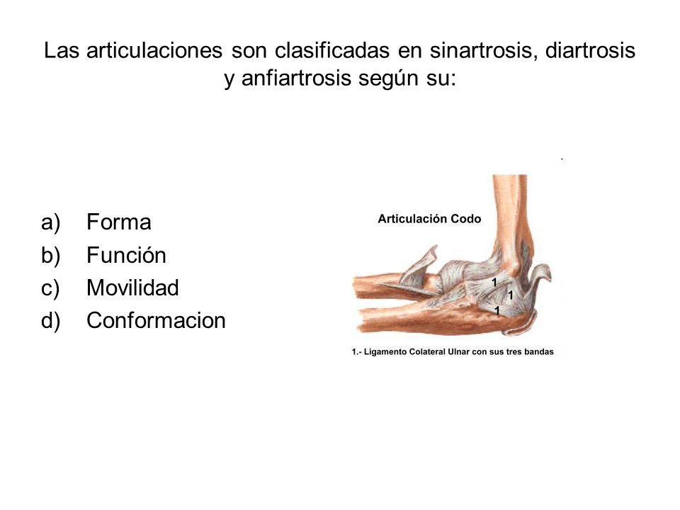 Las articulaciones son clasificadas en sinartrosis, diartrosis y anfiartrosis según su: