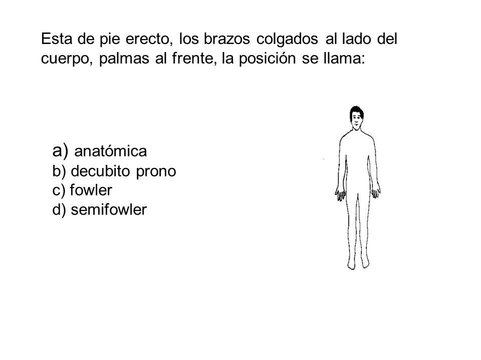 Esta de pie erecto, los brazos colgados al lado del cuerpo, palmas al frente, la posición se llama: