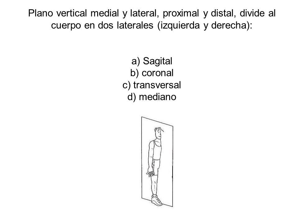 Plano vertical medial y lateral, proximal y distal, divide al cuerpo en dos laterales (izquierda y derecha):
