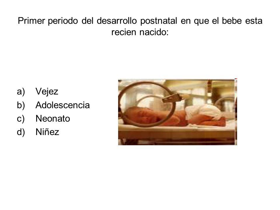 Primer periodo del desarrollo postnatal en que el bebe esta recien nacido: