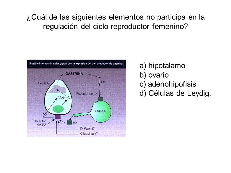 ¿Cuál de las siguientes elementos no participa en la regulación del ciclo reproductor femenino