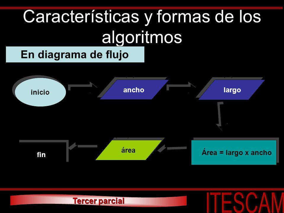 Características y formas de los algoritmos