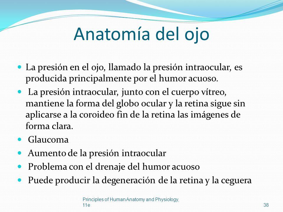 Anatomía del ojo La presión en el ojo, llamado la presión intraocular, es producida principalmente por el humor acuoso.