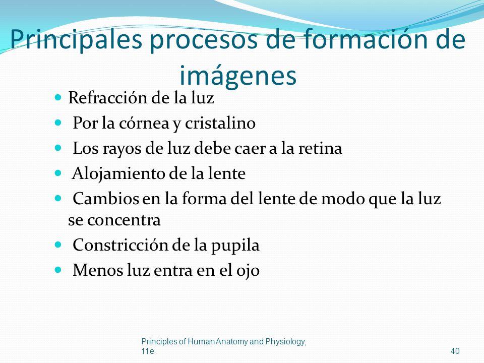 Principales procesos de formación de imágenes