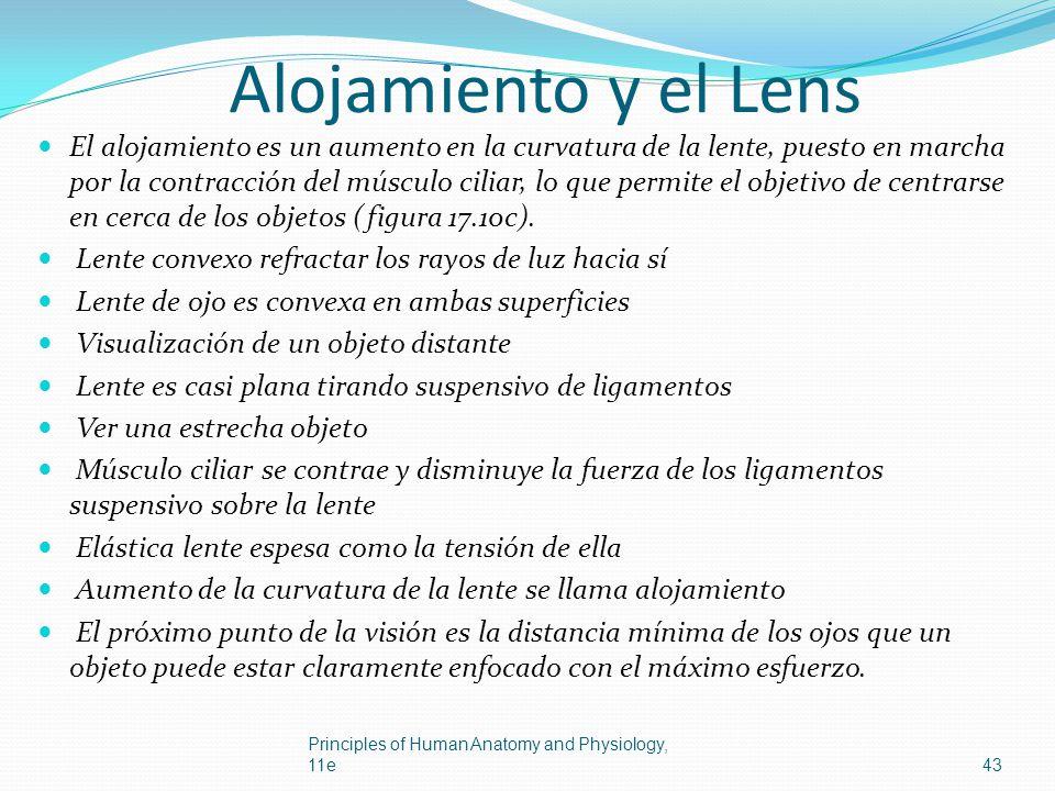 Alojamiento y el Lens
