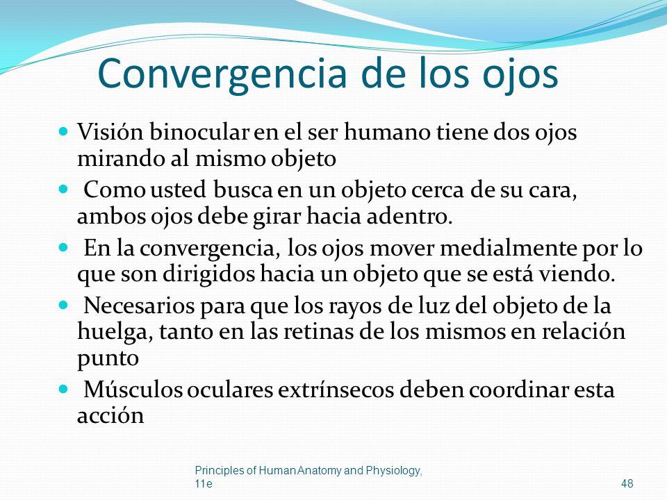 Convergencia de los ojos
