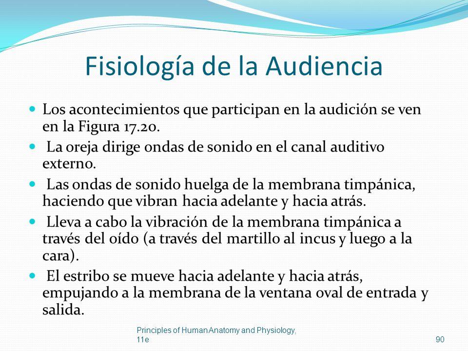 Fisiología de la Audiencia