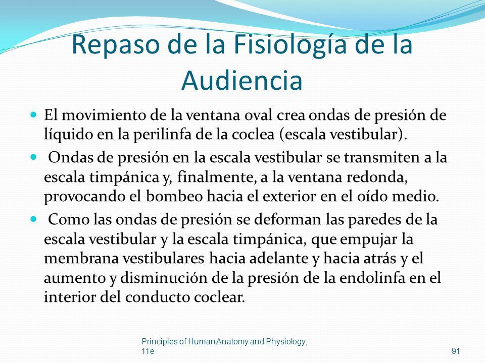 Repaso de la Fisiología de la Audiencia
