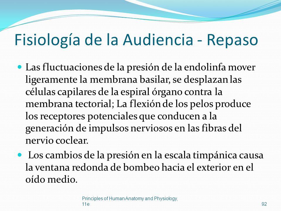 Fisiología de la Audiencia - Repaso