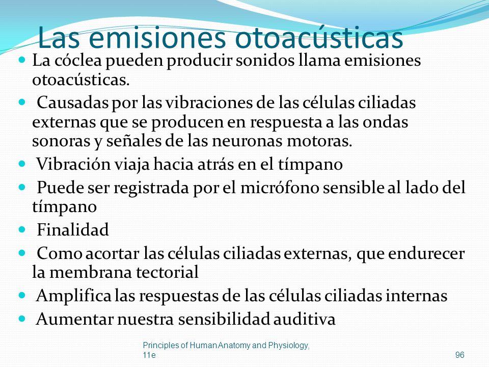 Las emisiones otoacústicas