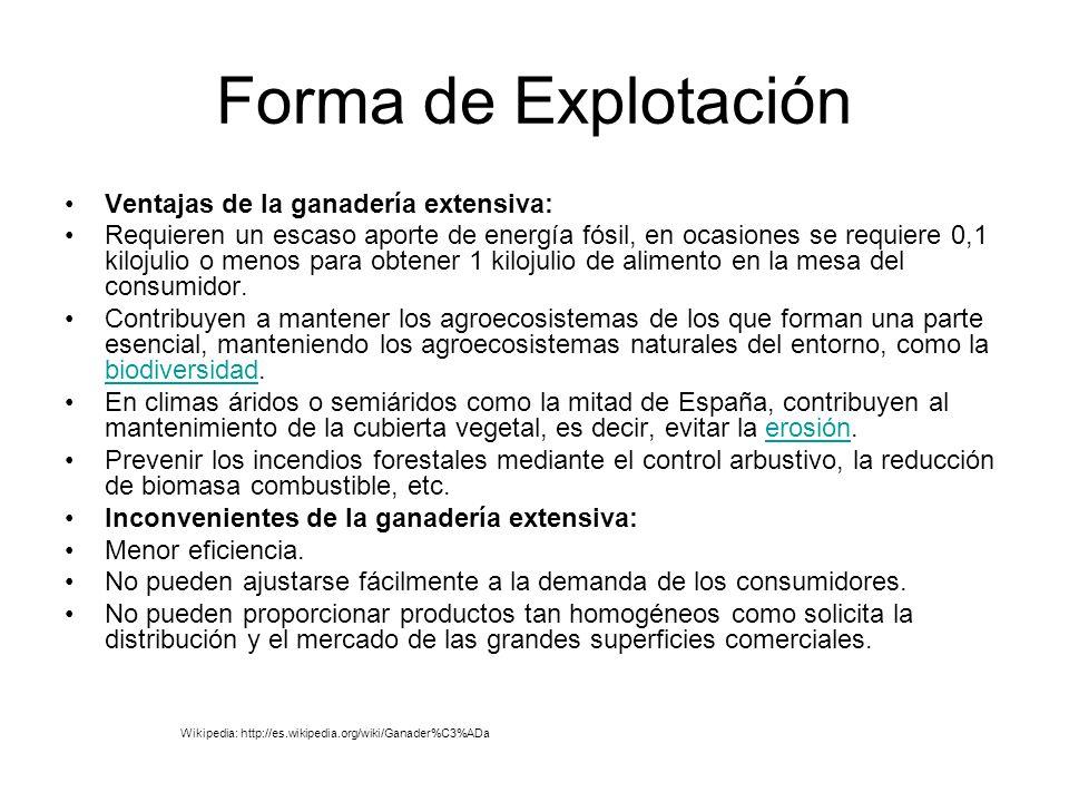 Forma de Explotación Ventajas de la ganadería extensiva: