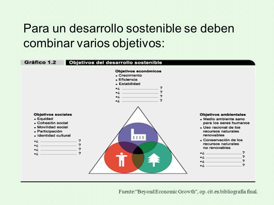 Para un desarrollo sostenible se deben combinar varios objetivos: