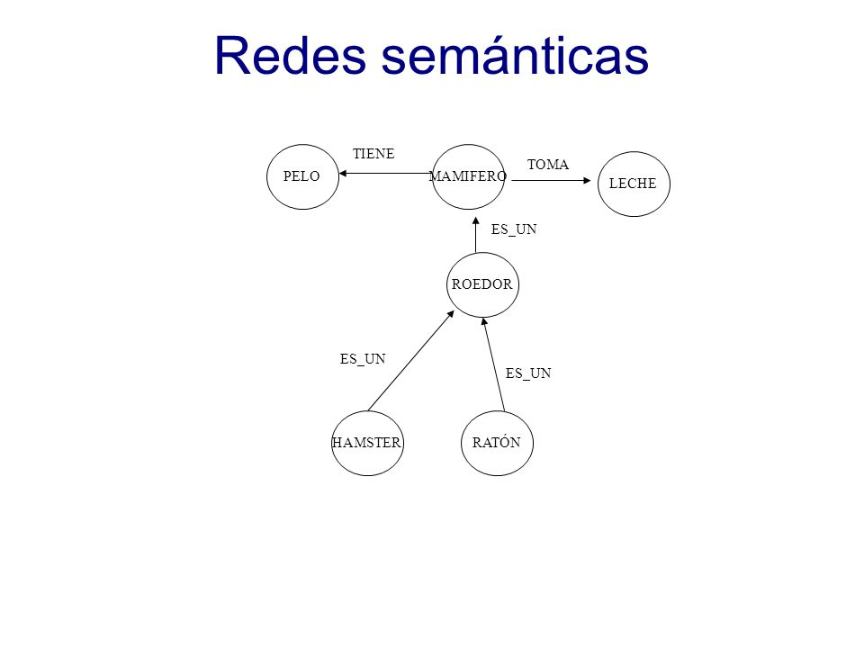 Redes semánticas PELO TIENE MAMIFERO TOMA LECHE ES_UN ROEDOR ES_UN