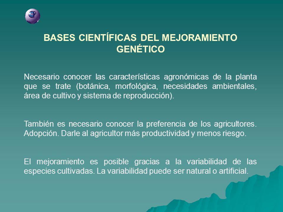 BASES CIENTÍFICAS DEL MEJORAMIENTO GENÉTICO