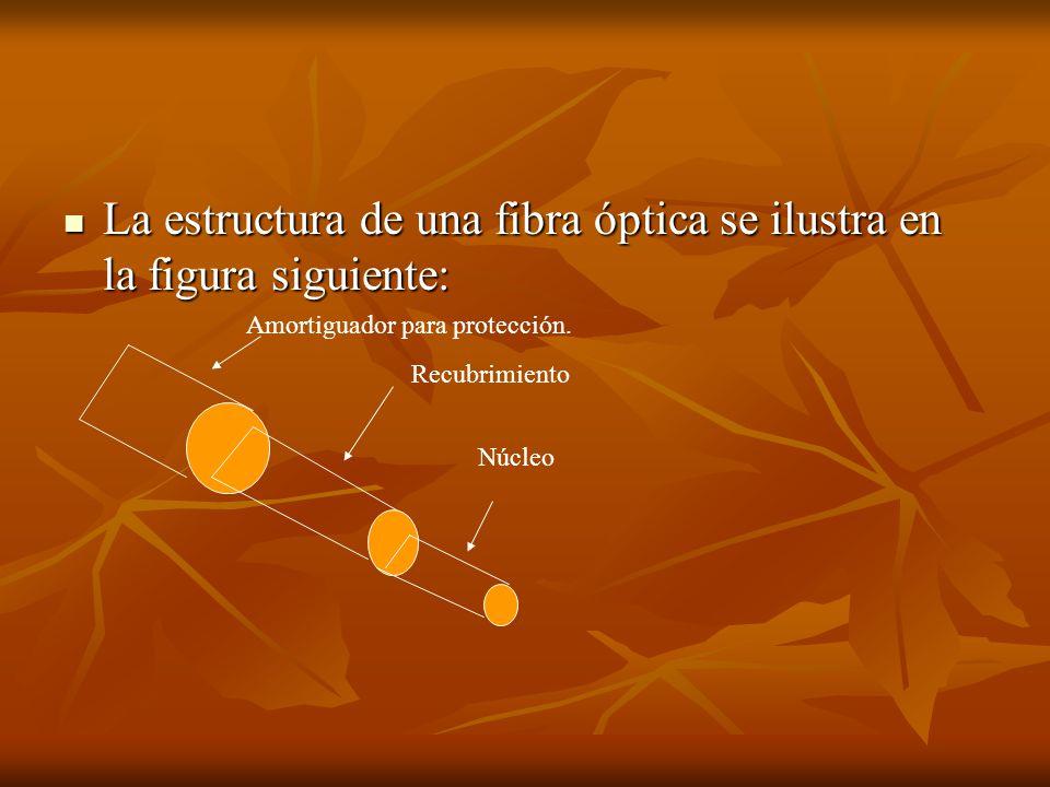 La estructura de una fibra óptica se ilustra en la figura siguiente: