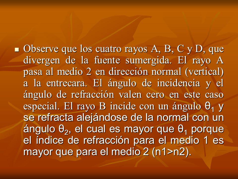 Observe que los cuatro rayos A, B, C y D, que divergen de la fuente sumergida.