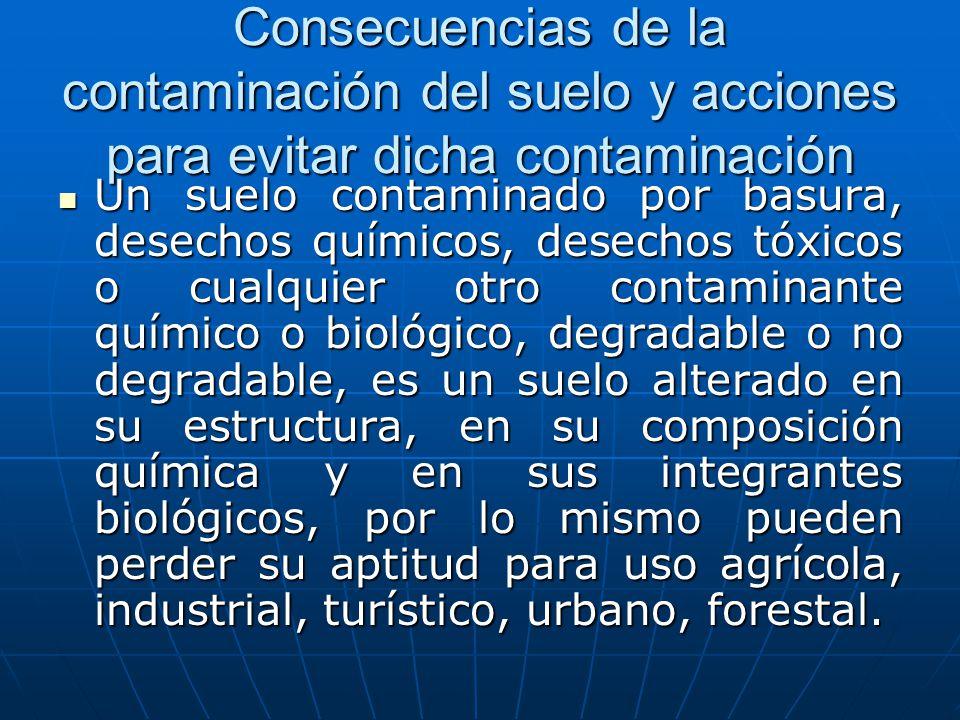 Consecuencias de la contaminación del suelo y acciones para evitar dicha contaminación