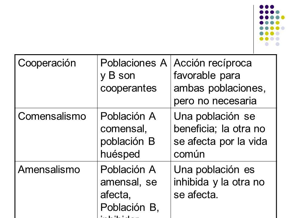Cooperación Poblaciones A y B son cooperantes. Acción recíproca favorable para ambas poblaciones, pero no necesaria.