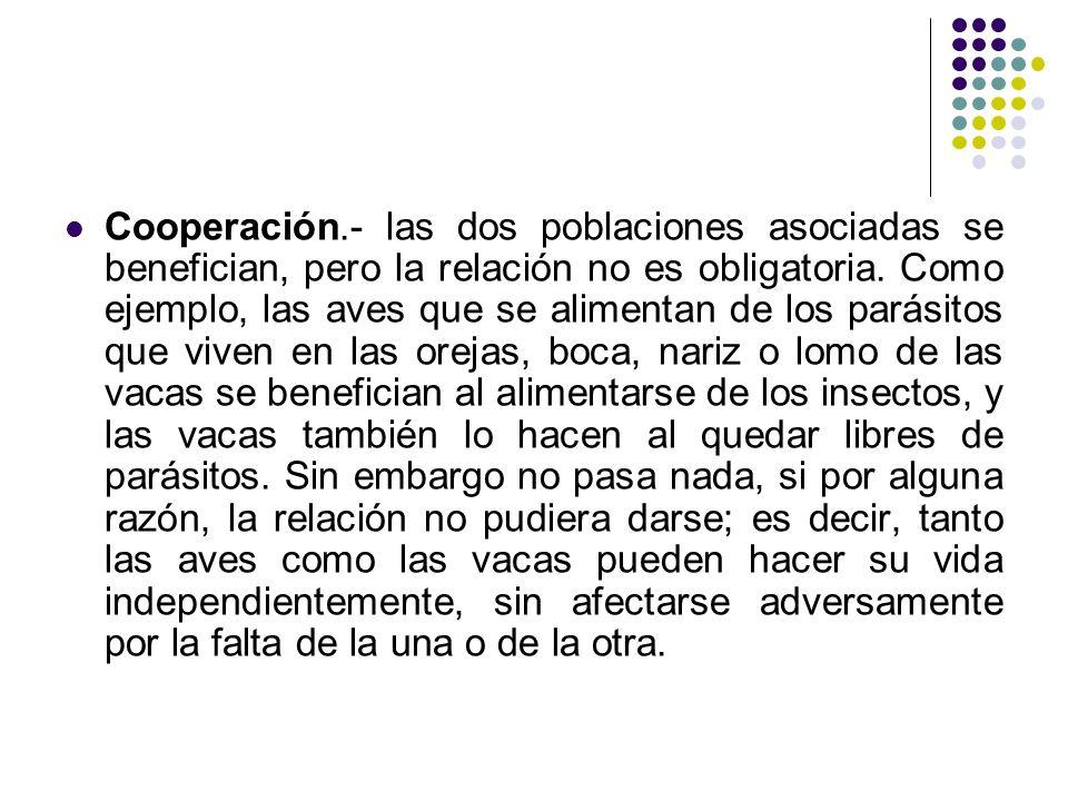 Cooperación.- las dos poblaciones asociadas se benefician, pero la relación no es obligatoria.