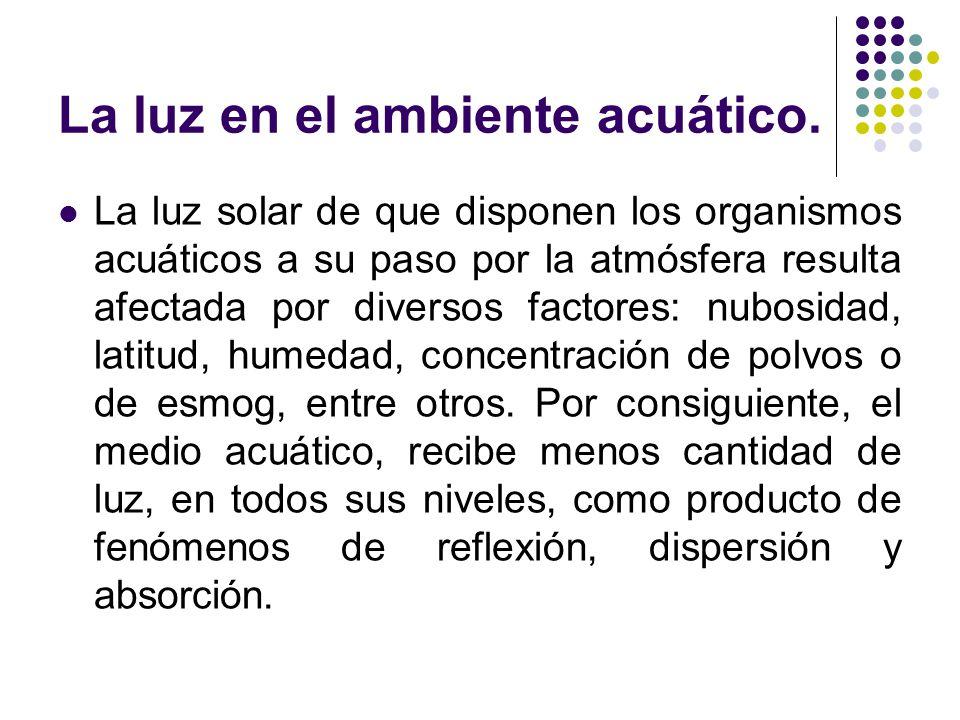 La luz en el ambiente acuático.