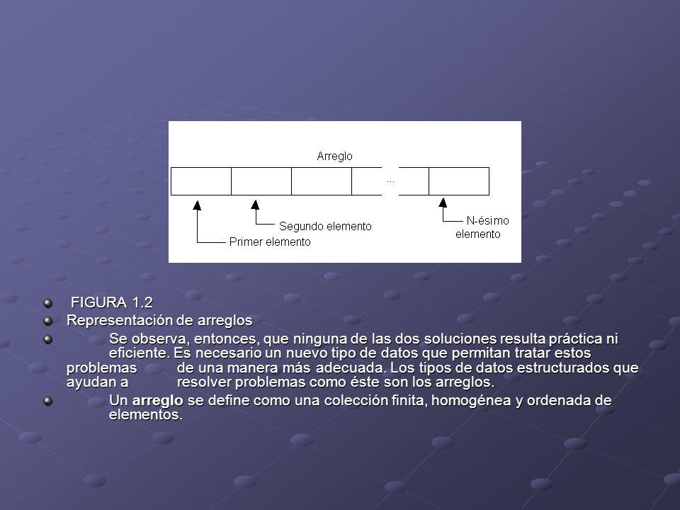 FIGURA 1.2 Representación de arreglos.
