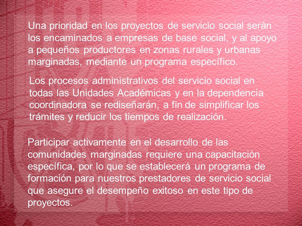 Una prioridad en los proyectos de servicio social serán
