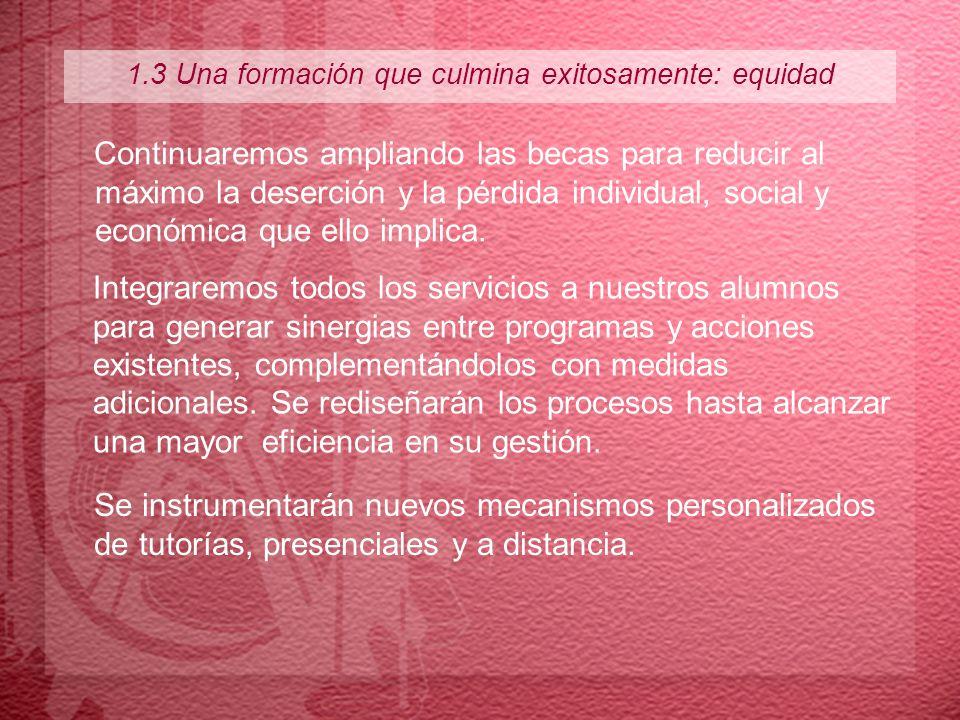 1.3 Una formación que culmina exitosamente: equidad