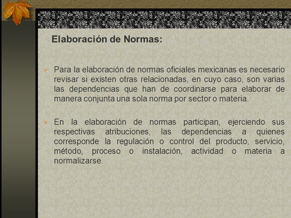 Elaboración de Normas: