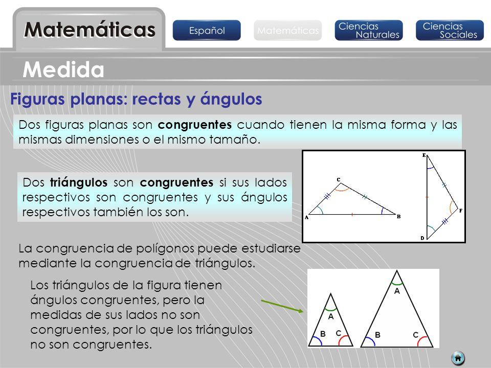 Medida Figuras planas: rectas y ángulos