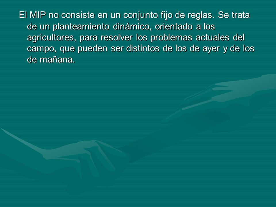 El MIP no consiste en un conjunto fijo de reglas