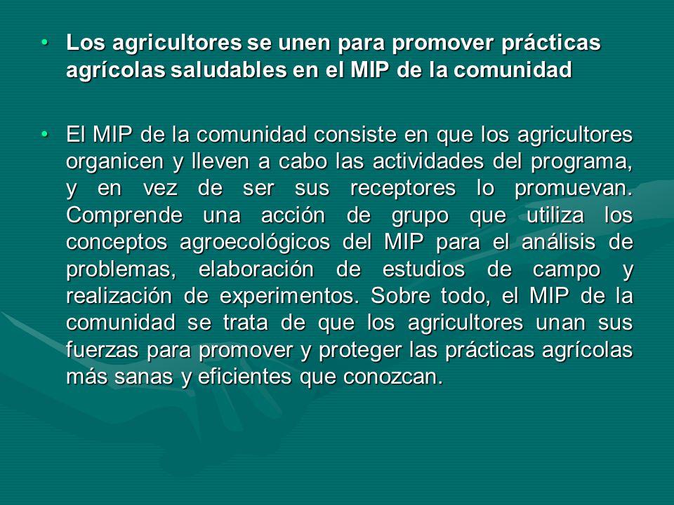 Los agricultores se unen para promover prácticas agrícolas saludables en el MIP de la comunidad