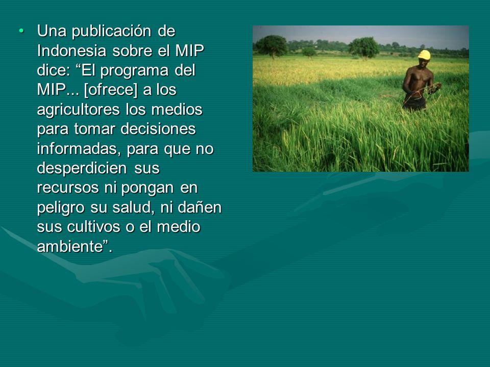 Una publicación de Indonesia sobre el MIP dice: El programa del MIP