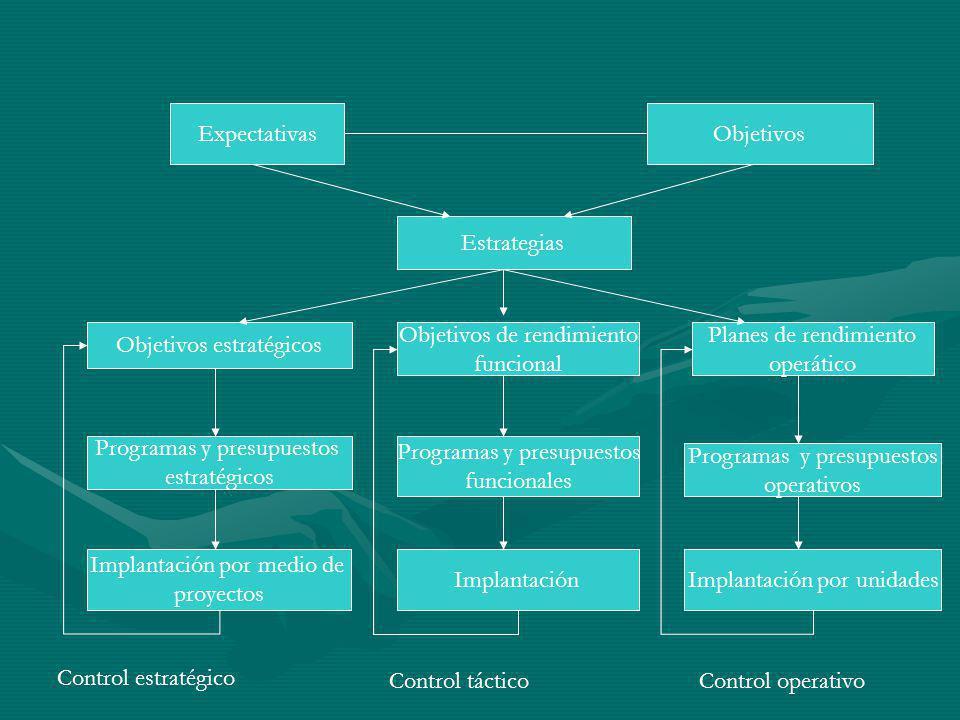 Objetivos estratégicos Objetivos de rendimiento funcional