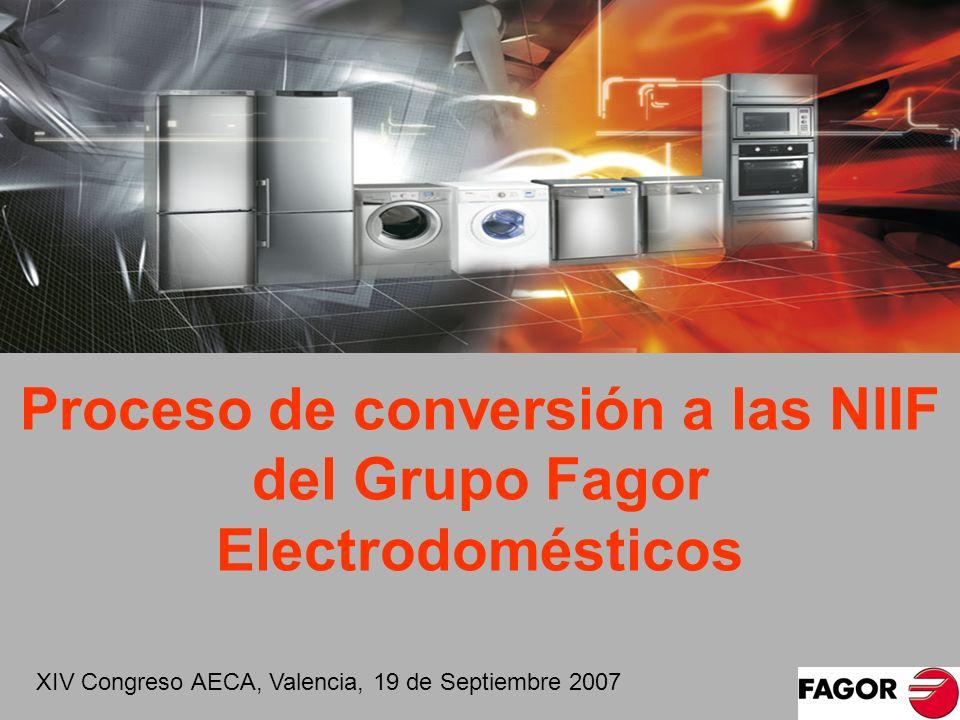 Proceso de conversión a las NIIF del Grupo Fagor Electrodomésticos