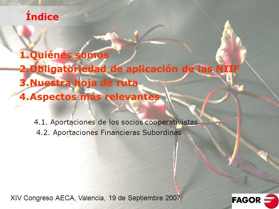 Obligatoriedad de aplicación de las NIIF Nuestra hoja de ruta