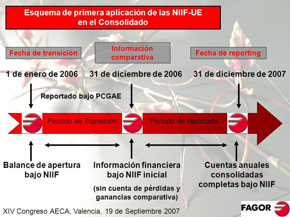 Esquema de primera aplicación de las NIIF-UE en el Consolidado