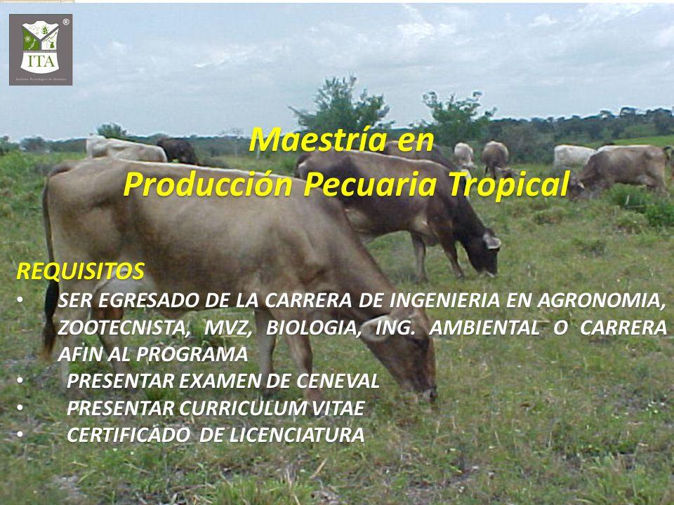 Producción Pecuaria Tropical