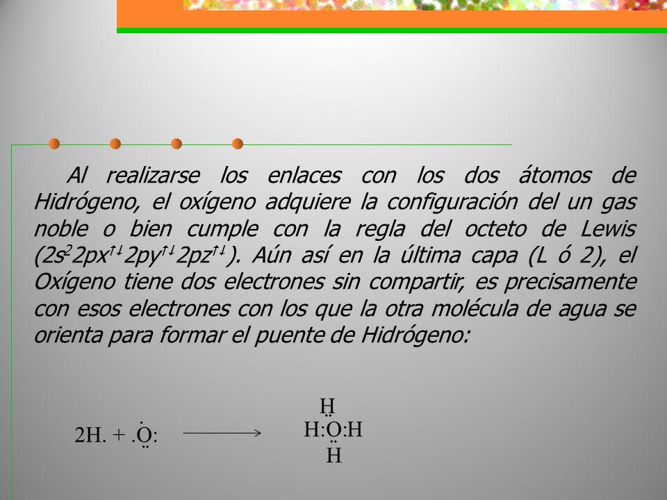 Al realizarse los enlaces con los dos átomos de Hidrógeno, el oxígeno adquiere la configuración del un gas noble o bien cumple con la regla del octeto de Lewis (2s22px2py2pz). Aún así en la última capa (L ó 2), el Oxígeno tiene dos electrones sin compartir, es precisamente con esos electrones con los que la otra molécula de agua se orienta para formar el puente de Hidrógeno: